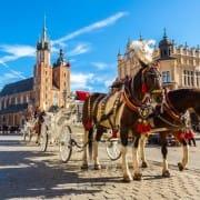 Szkolne wycieczki Kraków